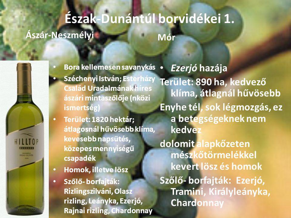 Észak-Dunántúl borvidékei 1.