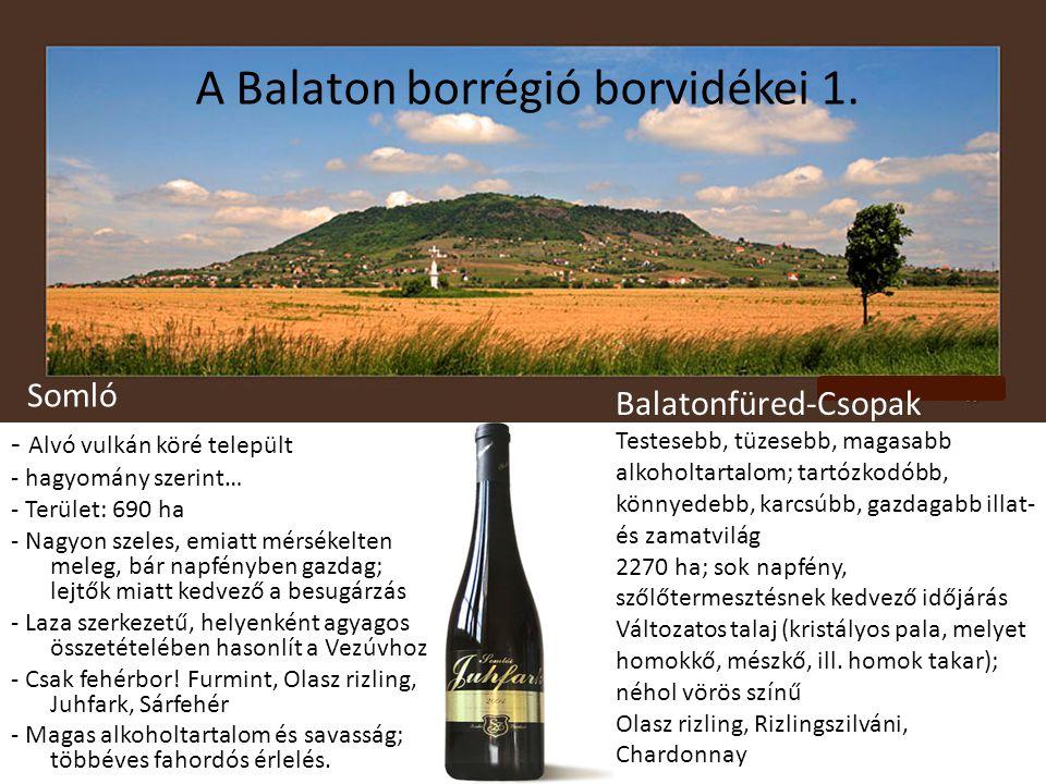 A Balaton borrégió borvidékei 1.