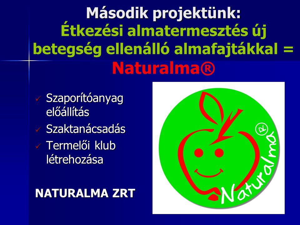 Második projektünk: Étkezési almatermesztés új betegség ellenálló almafajtákkal = Naturalma®