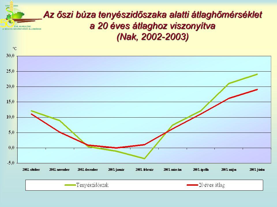 Az őszi búza tenyészidőszaka alatti átlaghőmérséklet a 20 éves átlaghoz viszonyítva (Nak, 2002-2003)
