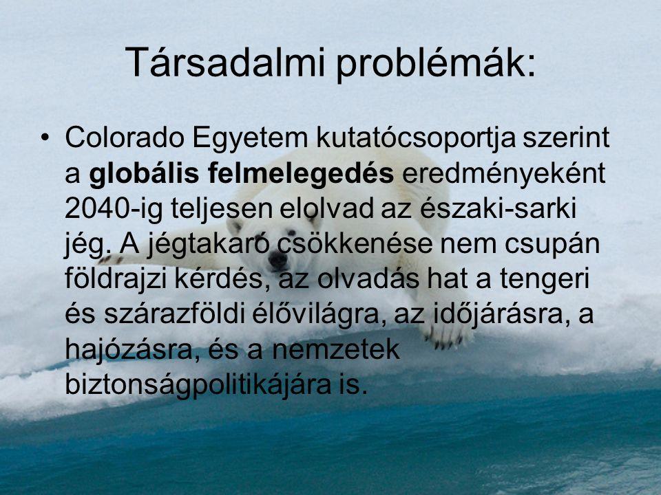 Társadalmi problémák: