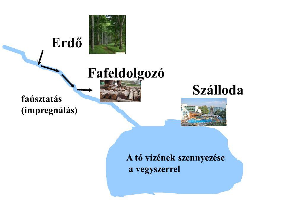 Erdő Fafeldolgozó Szálloda faúsztatás (impregnálás)