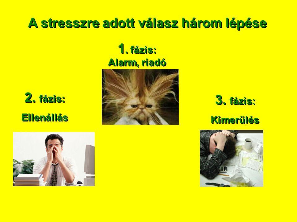 A stresszre adott válasz három lépése