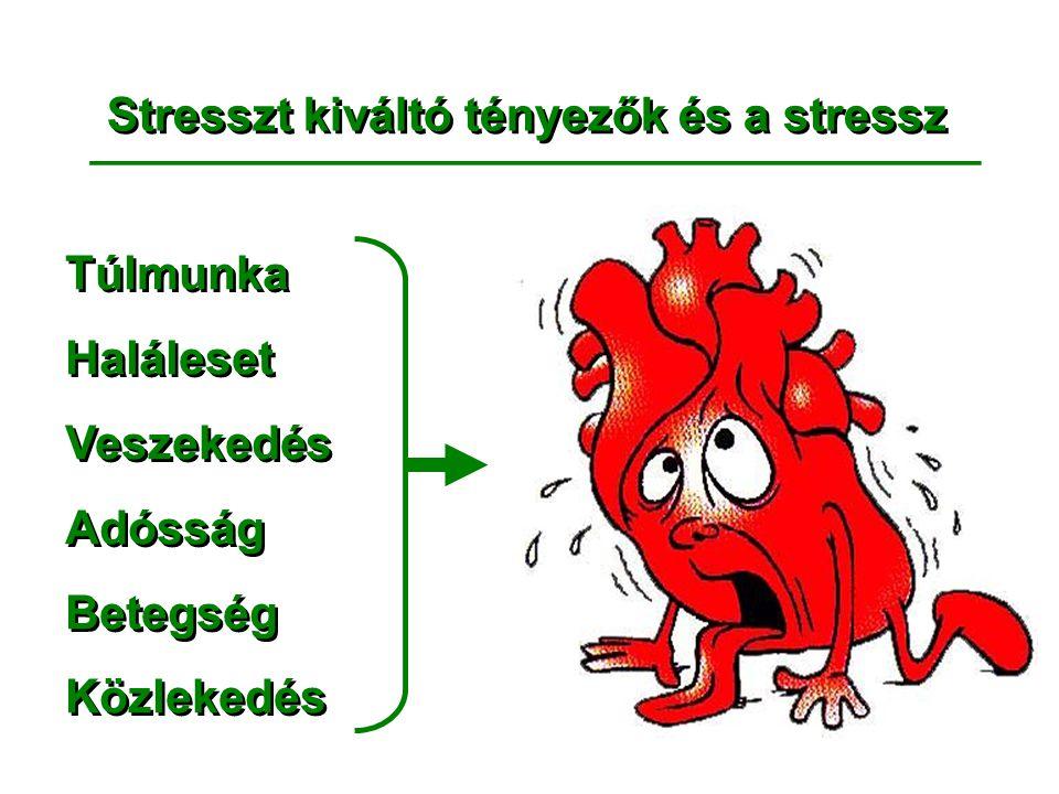 Stresszt kiváltó tényezők és a stressz