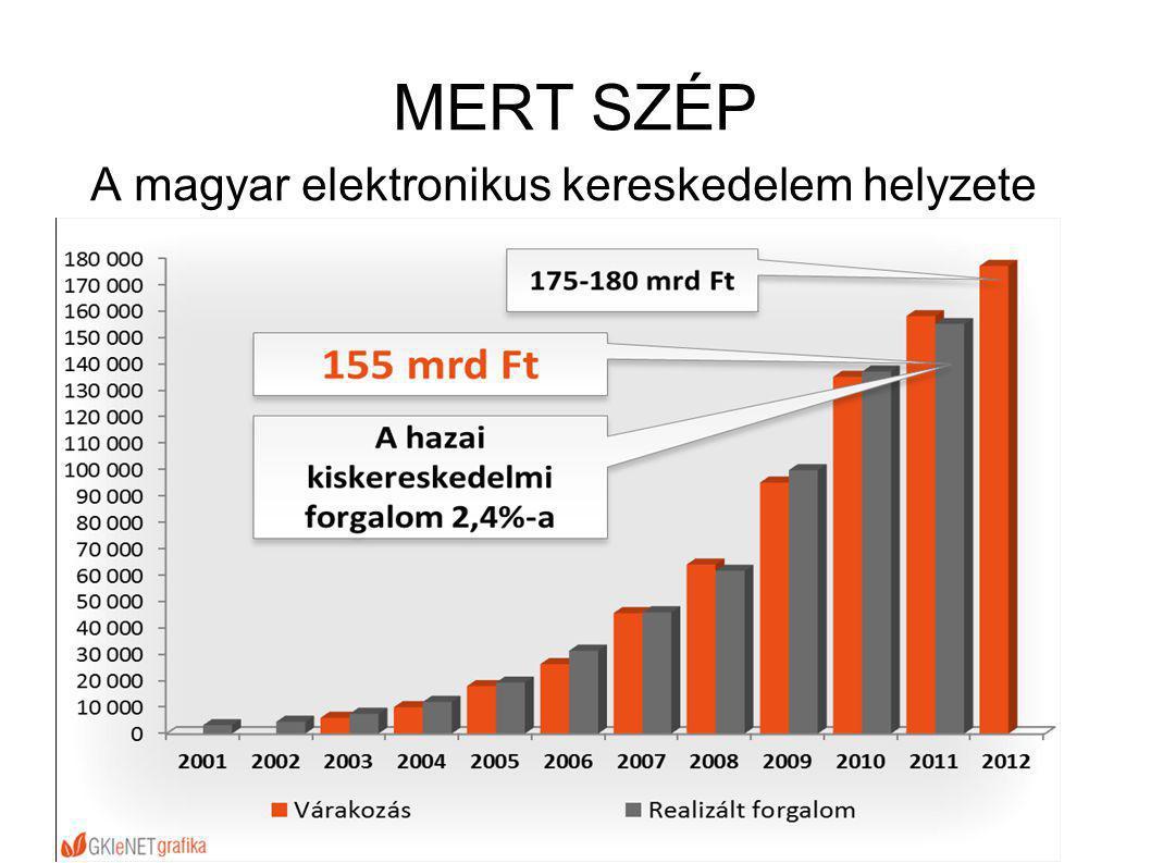 A magyar elektronikus kereskedelem helyzete