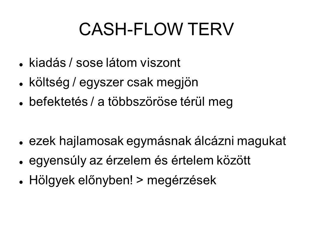 CASH-FLOW TERV kiadás / sose látom viszont
