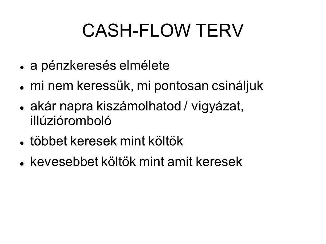 CASH-FLOW TERV a pénzkeresés elmélete
