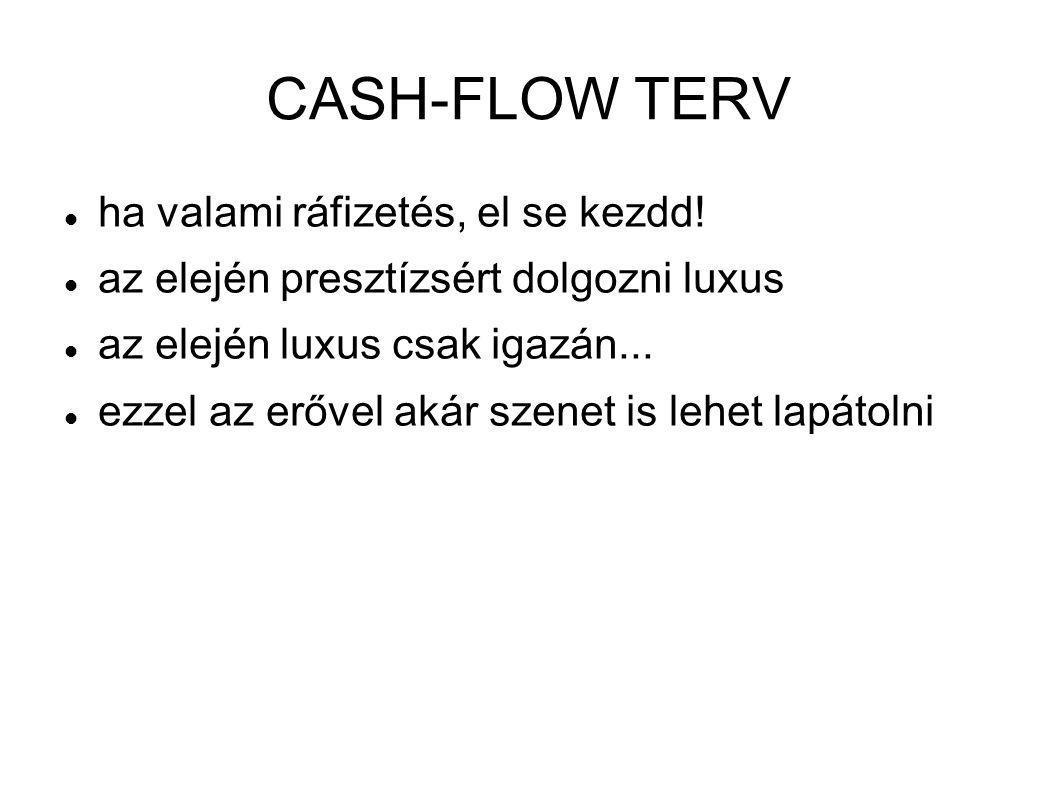 CASH-FLOW TERV ha valami ráfizetés, el se kezdd!