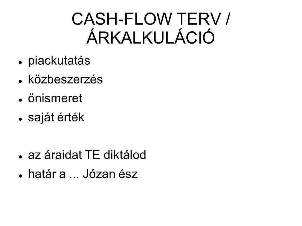 CASH-FLOW TERV / ÁRKALKULÁCIÓ