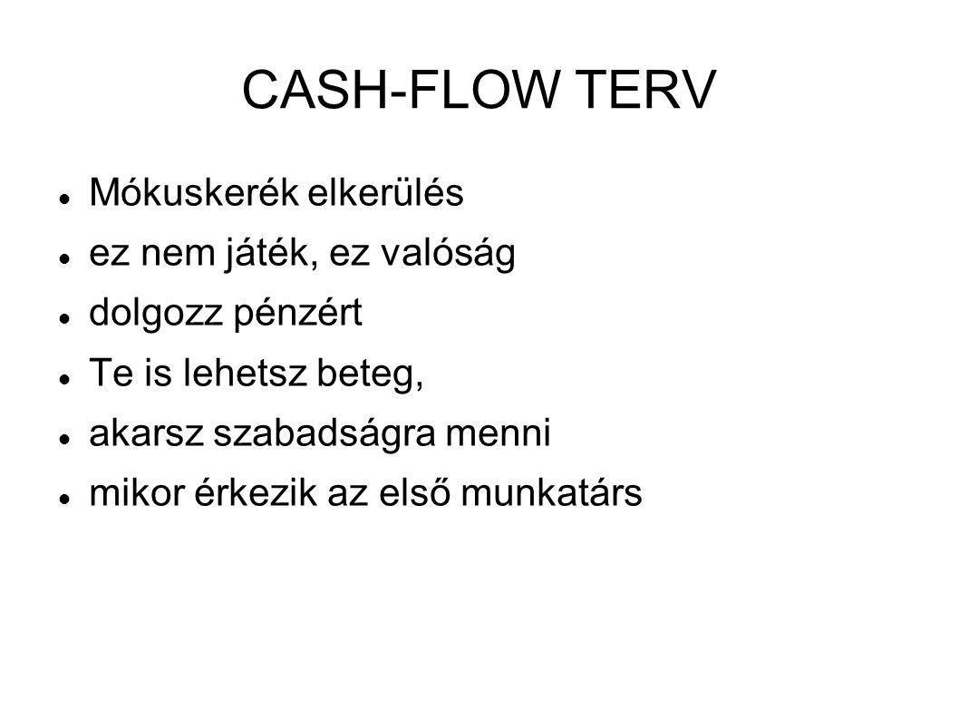 CASH-FLOW TERV Mókuskerék elkerülés ez nem játék, ez valóság