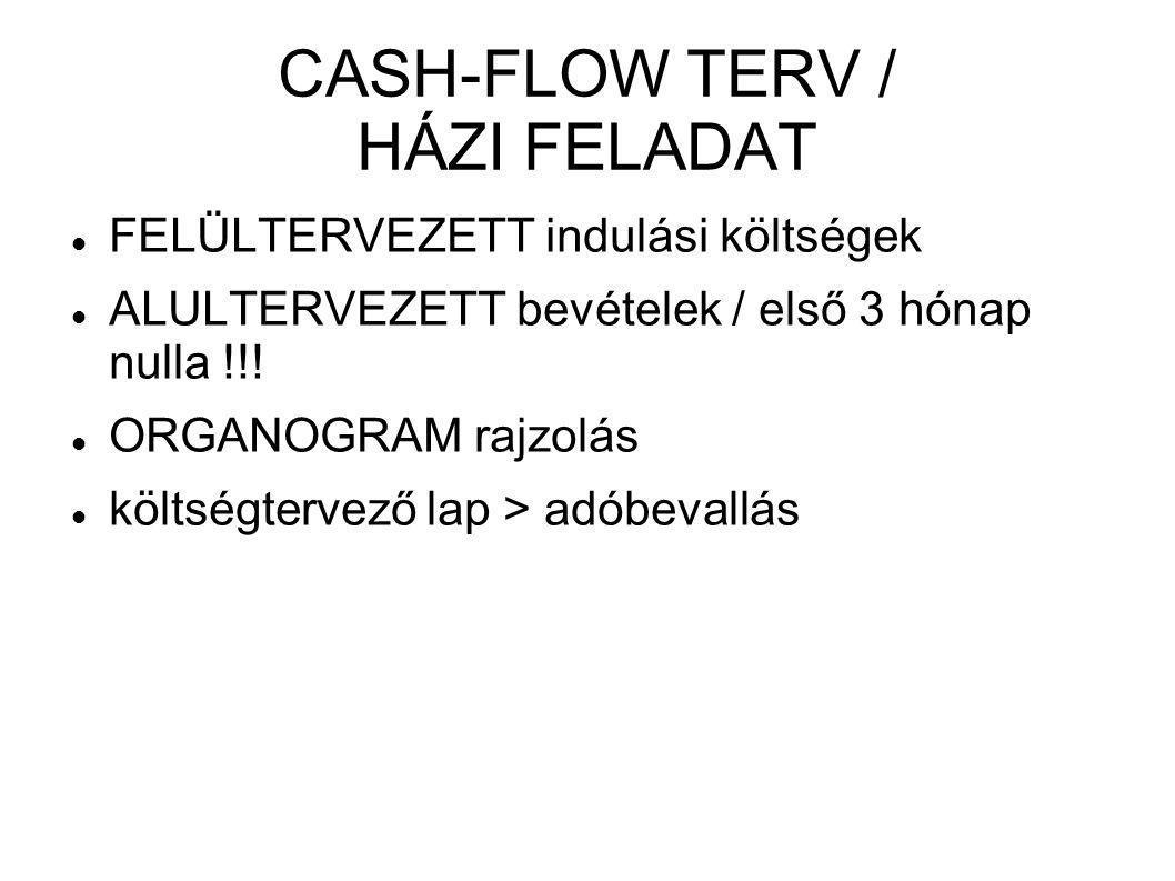 CASH-FLOW TERV / HÁZI FELADAT