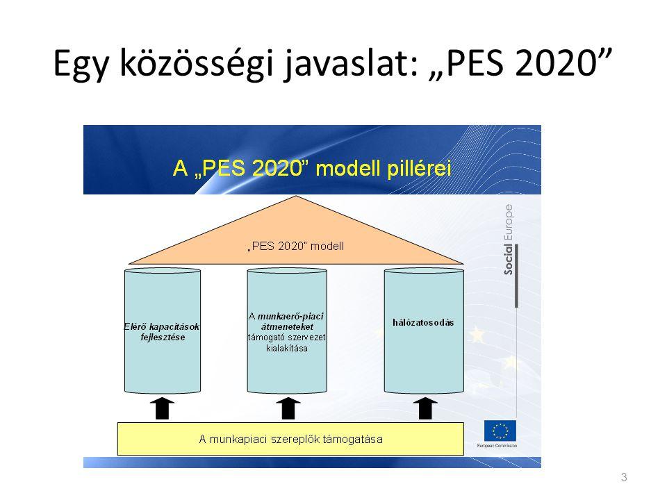 """Egy közösségi javaslat: """"PES 2020"""