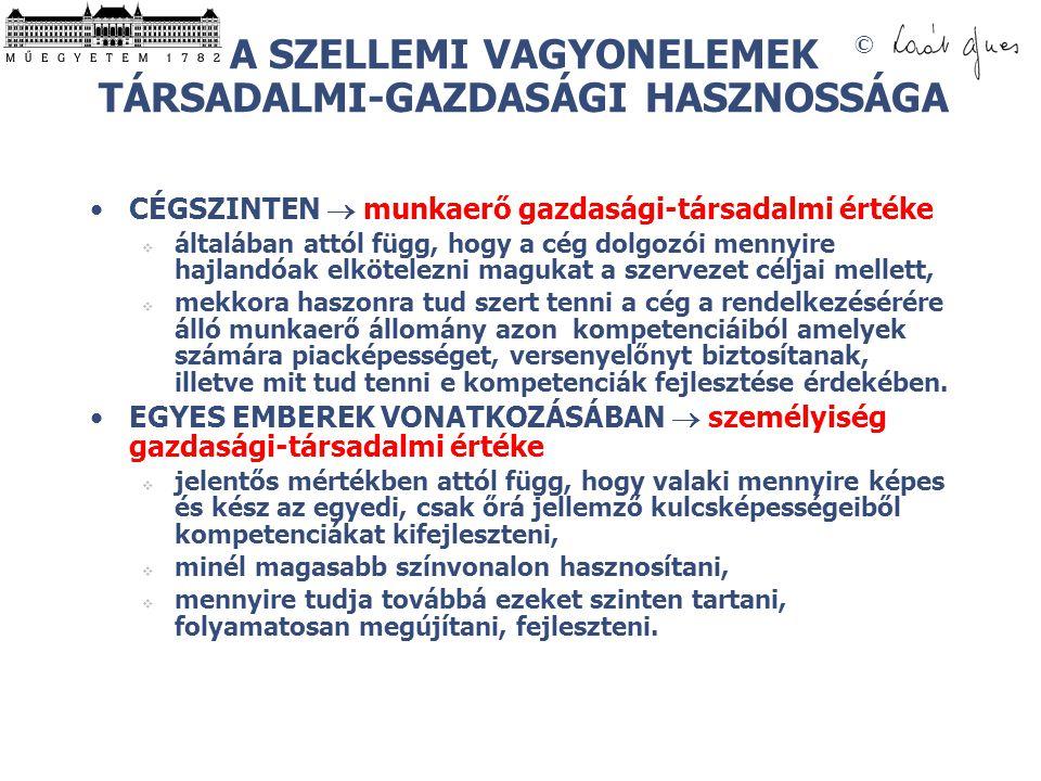 A SZELLEMI VAGYONELEMEK TÁRSADALMI-GAZDASÁGI HASZNOSSÁGA