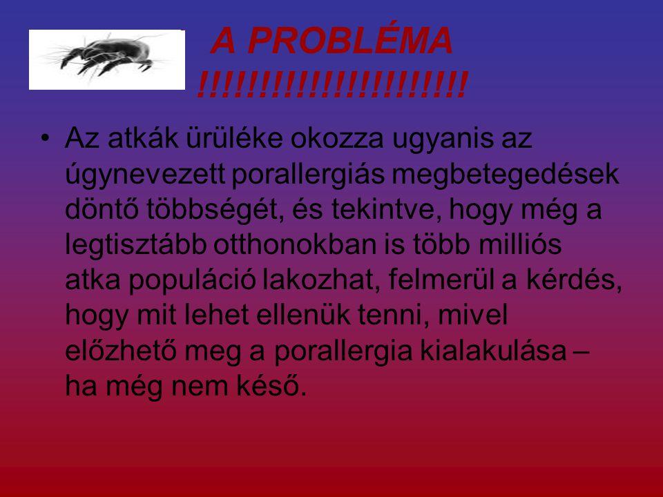 A PROBLÉMA !!!!!!!!!!!!!!!!!!!!!!