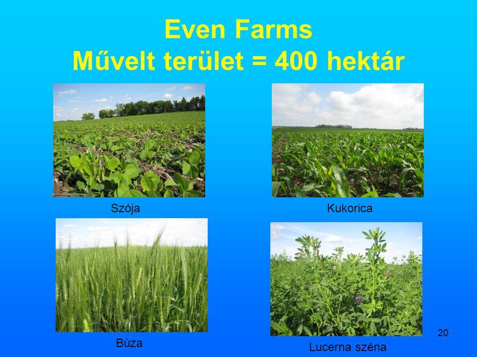 Even Farms Művelt terület = 400 hektár
