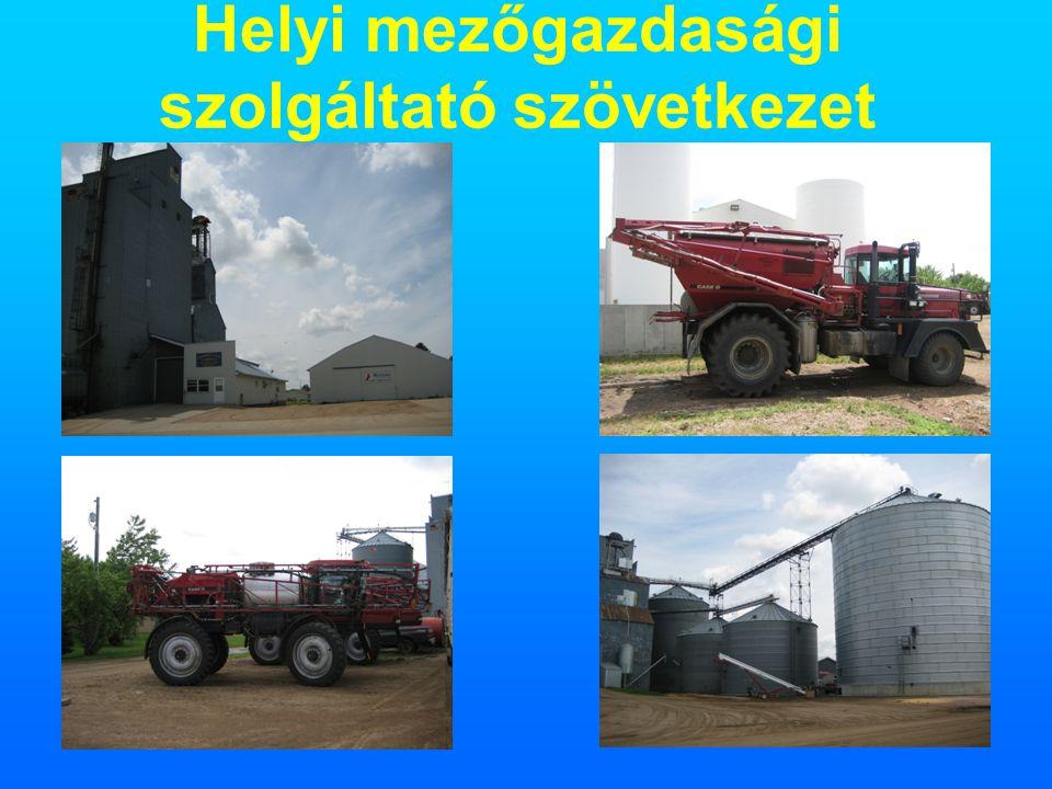 Helyi mezőgazdasági szolgáltató szövetkezet