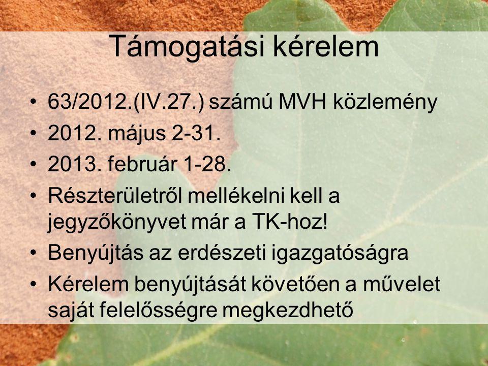 Támogatási kérelem 63/2012.(IV.27.) számú MVH közlemény