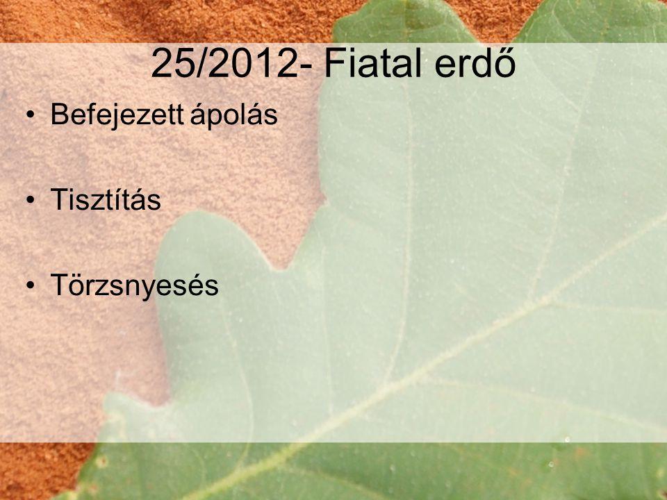 25/2012- Fiatal erdő Befejezett ápolás Tisztítás Törzsnyesés