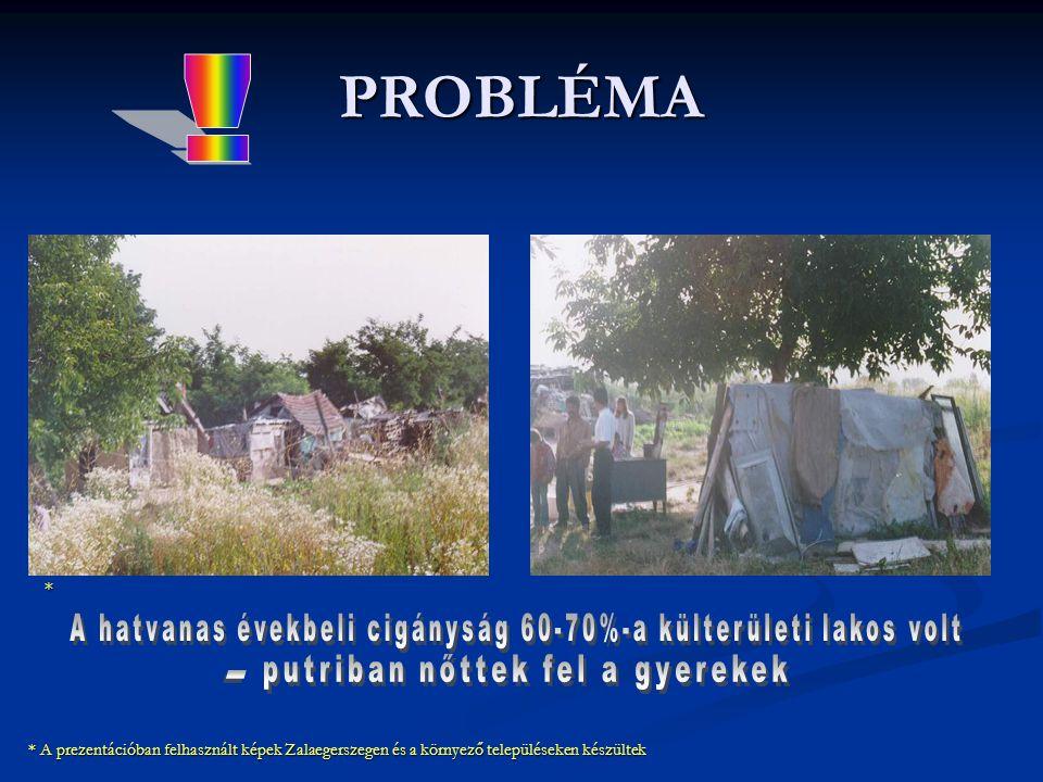 PROBLÉMA ! * A hatvanas évekbeli cigányság 60-70%-a külterületi lakos volt. putriban nőttek fel a gyerekek.
