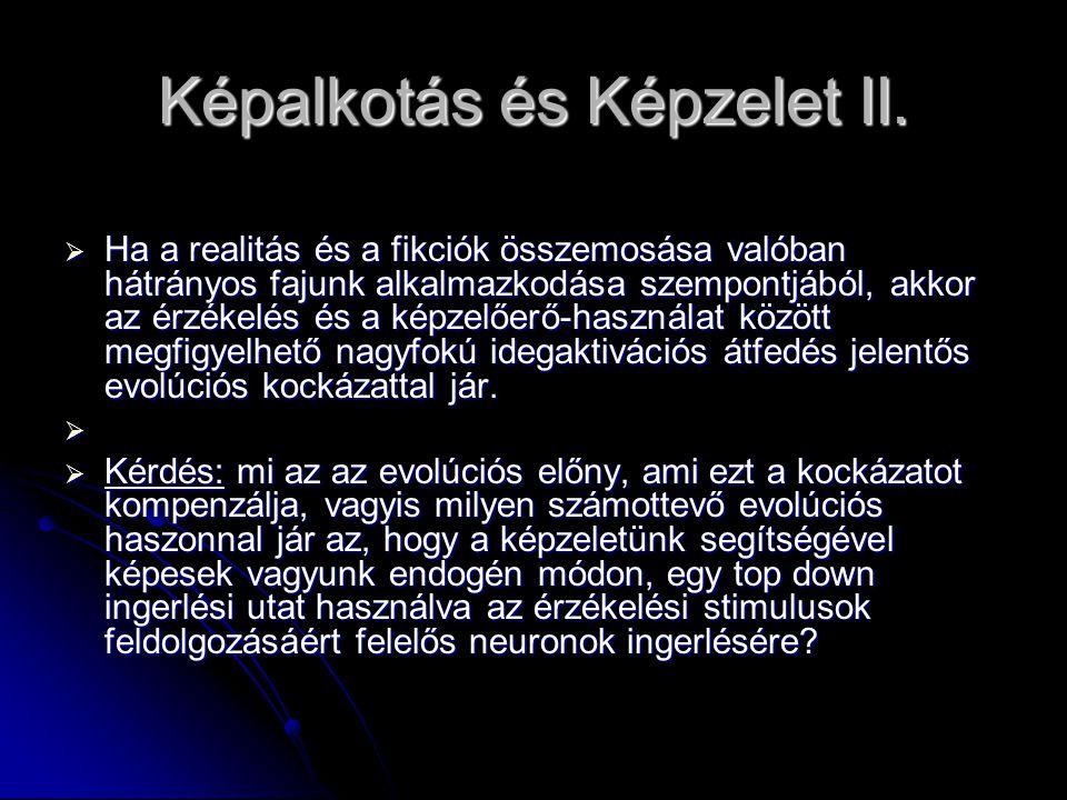 Képalkotás és Képzelet II.