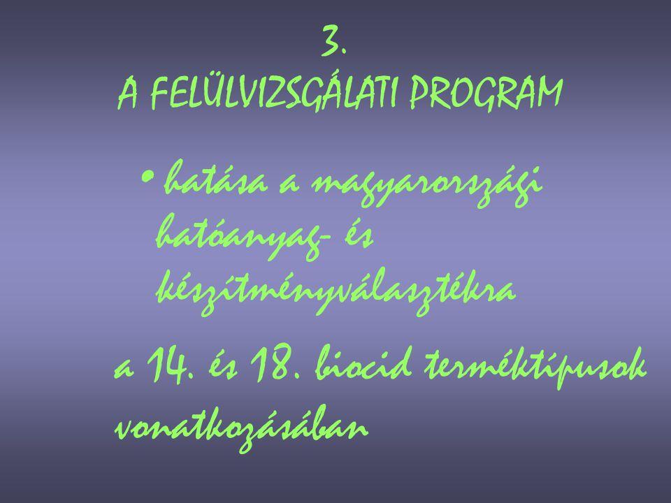 3. A FELÜLVIZSGÁLATI PROGRAM
