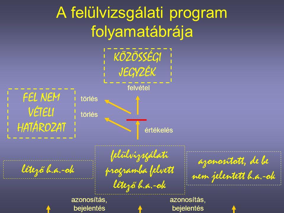 A felülvizsgálati program folyamatábrája
