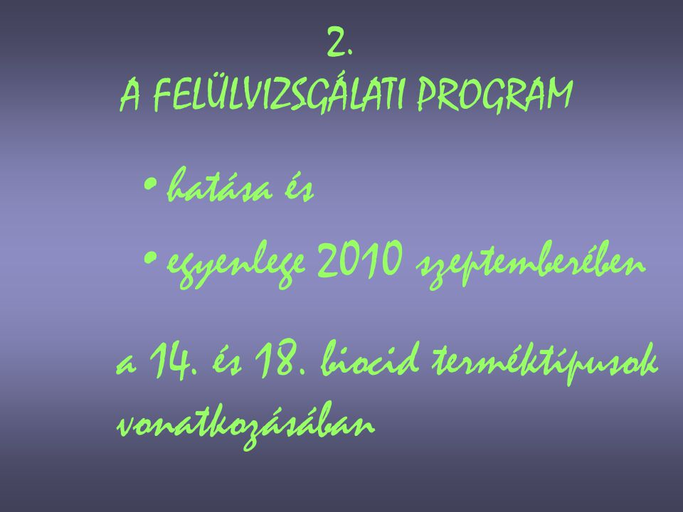 2. A FELÜLVIZSGÁLATI PROGRAM