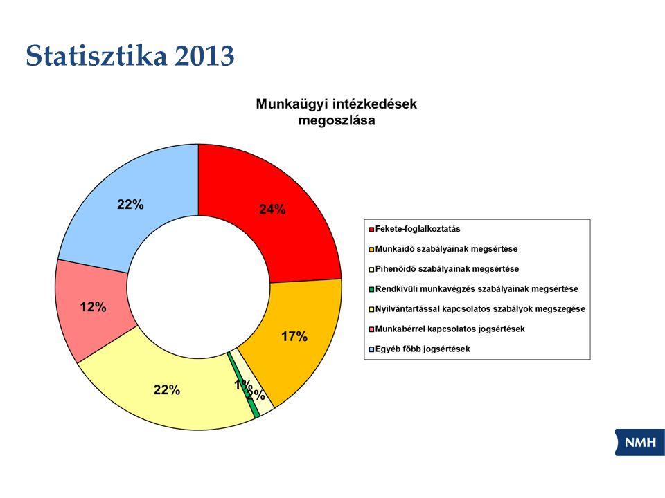 Statisztika 2013