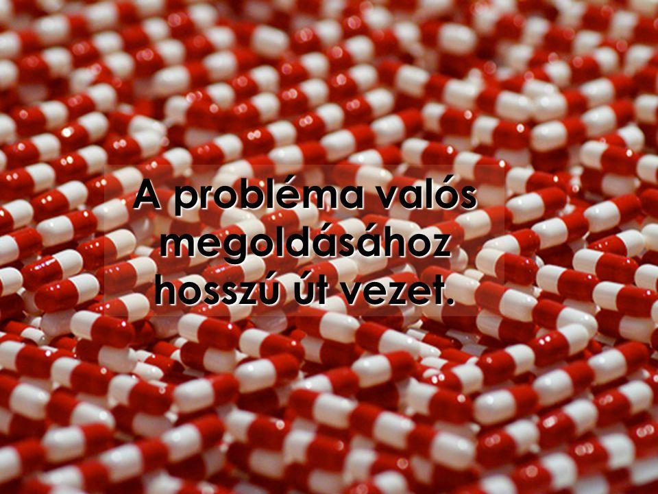A probléma valós megoldásához hosszú út vezet.