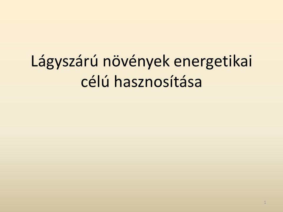 Lágyszárú növények energetikai célú hasznosítása
