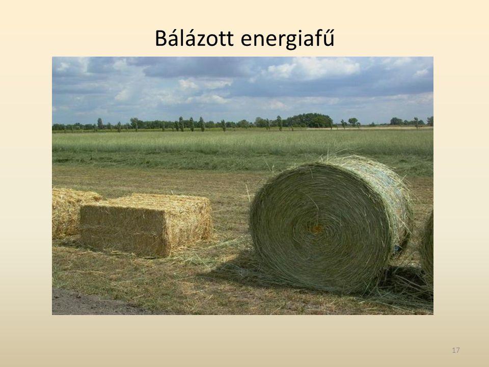 Bálázott energiafű
