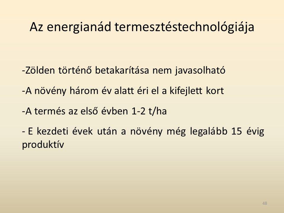Az energianád termesztéstechnológiája