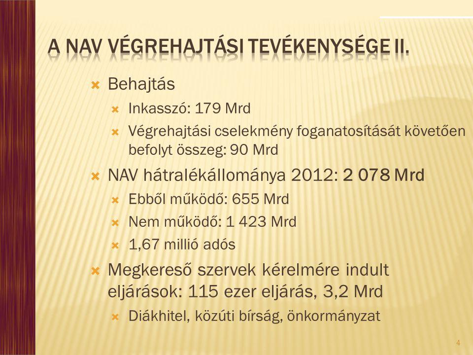 A NAV végrehajtási tevékenysége II.