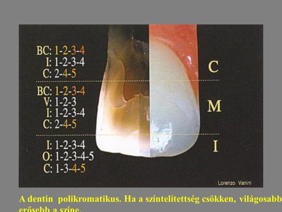 A dentin polikromatikus