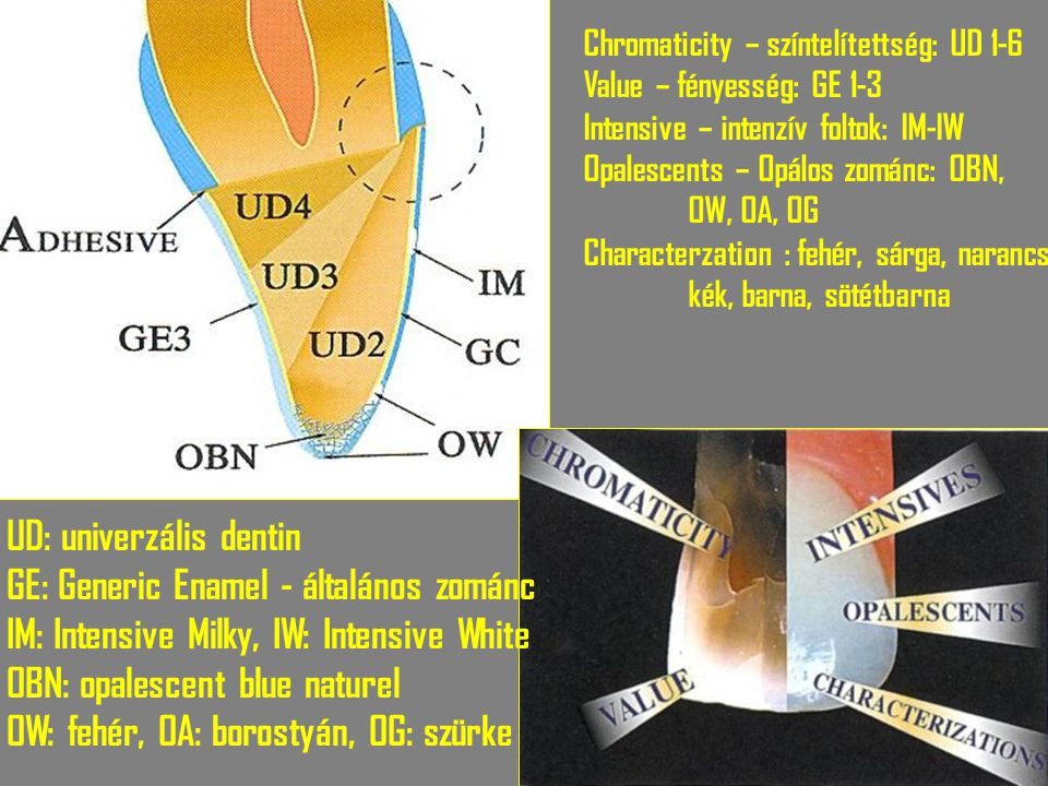 UD: univerzális dentin GE: Generic Enamel - általános zománc