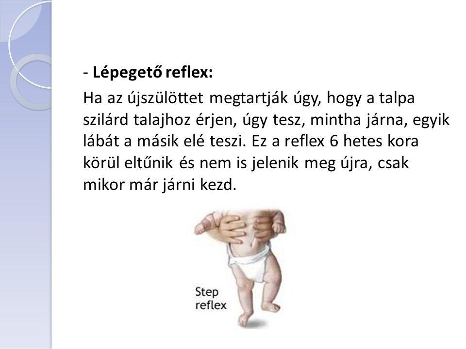 - Lépegető reflex: Ha az újszülöttet megtartják úgy, hogy a talpa szilárd talajhoz érjen, úgy tesz, mintha járna, egyik lábát a másik elé teszi.