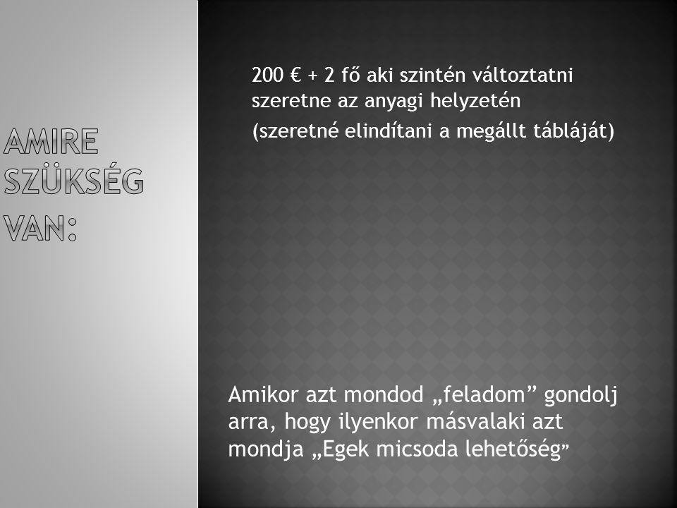 Amire szükség van: 200 € + 2 fő aki szintén változtatni szeretne az anyagi helyzetén. (szeretné elindítani a megállt tábláját)