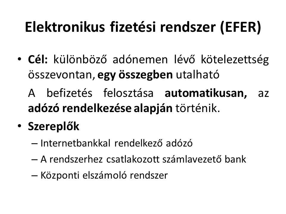 Elektronikus fizetési rendszer (EFER)