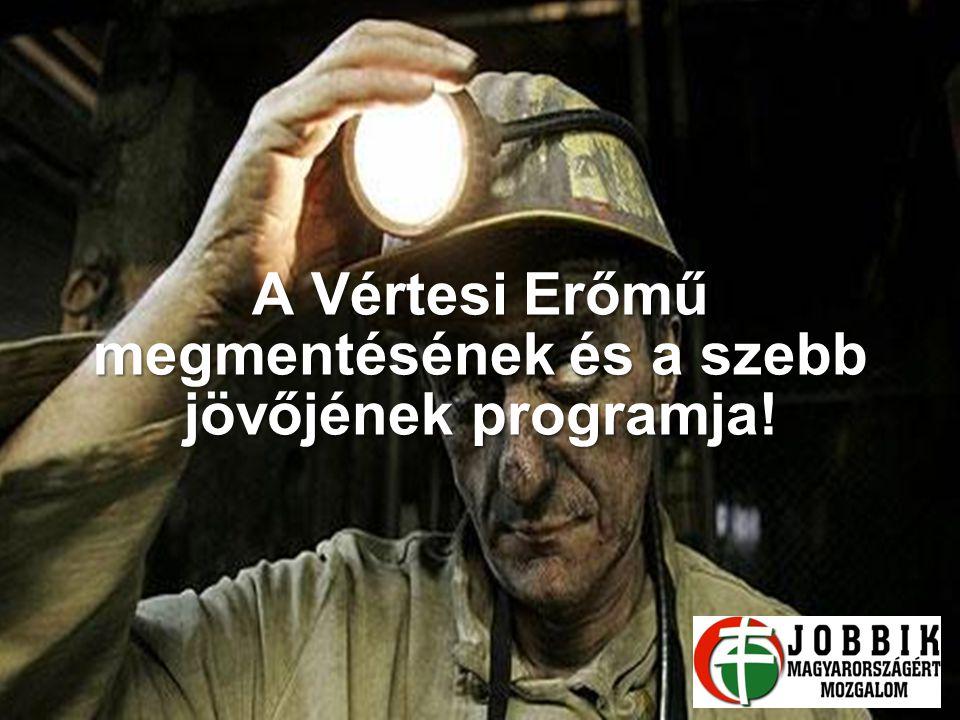 A Vértesi Erőmű megmentésének és a szebb jövőjének programja!