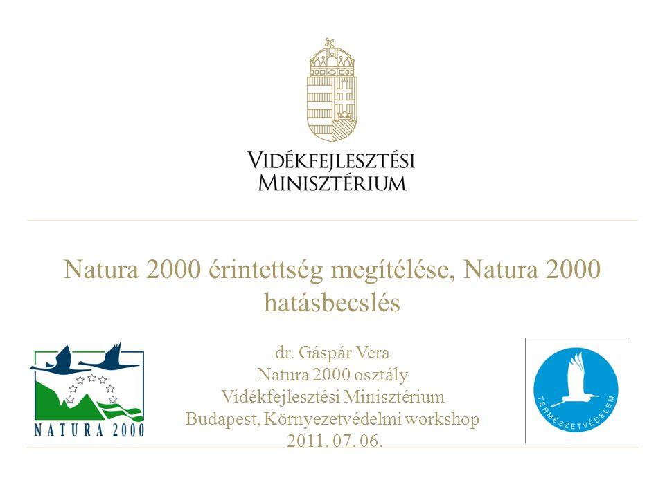 Natura 2000 érintettség megítélése, Natura 2000 hatásbecslés