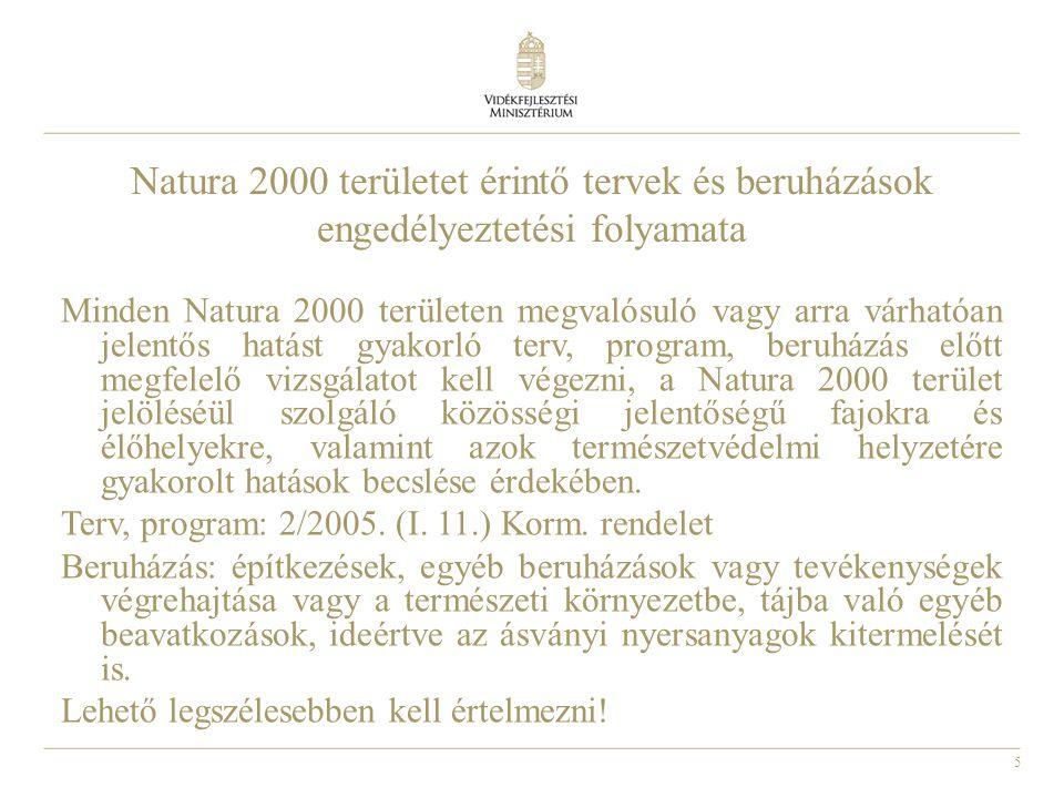 Natura 2000 területet érintő tervek és beruházások engedélyeztetési folyamata