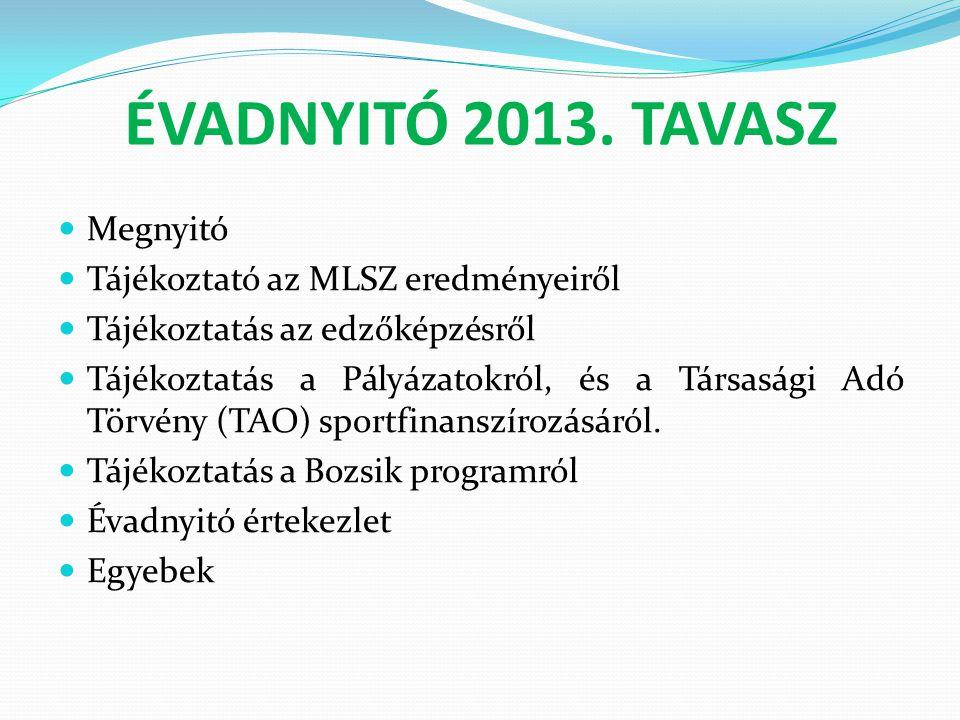 ÉVADNYITÓ 2013. TAVASZ Megnyitó Tájékoztató az MLSZ eredményeiről