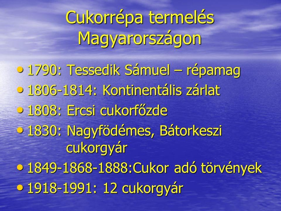 Cukorrépa termelés Magyarországon