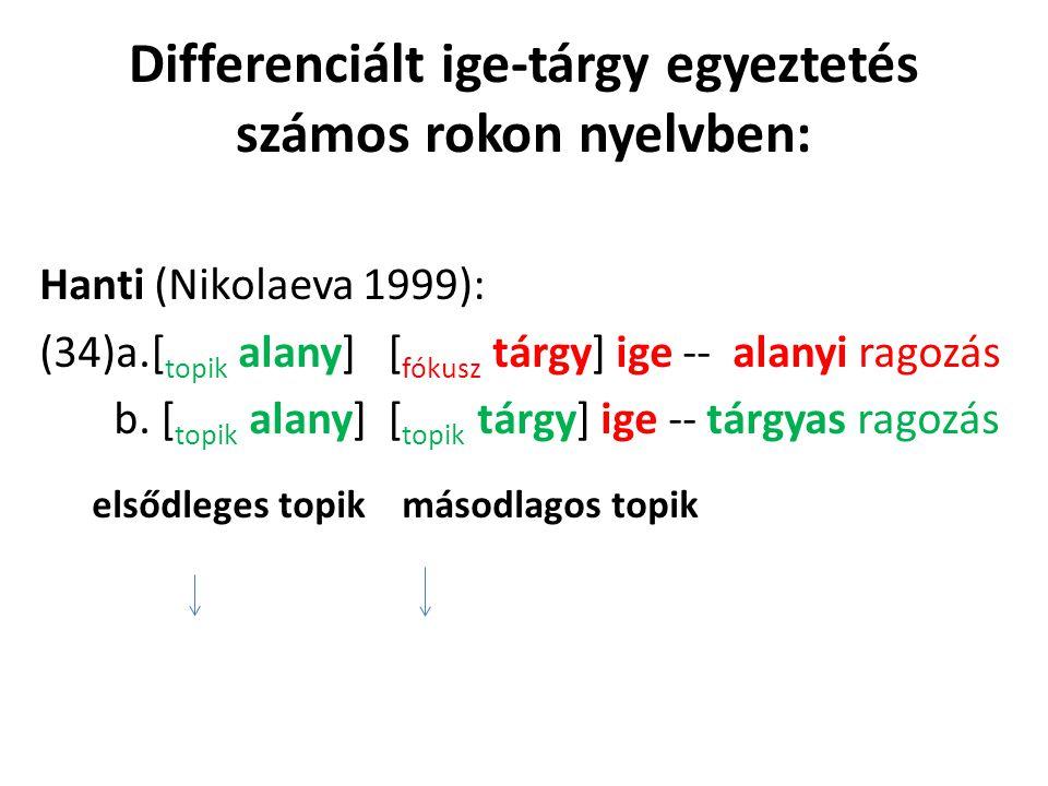 Differenciált ige-tárgy egyeztetés számos rokon nyelvben: