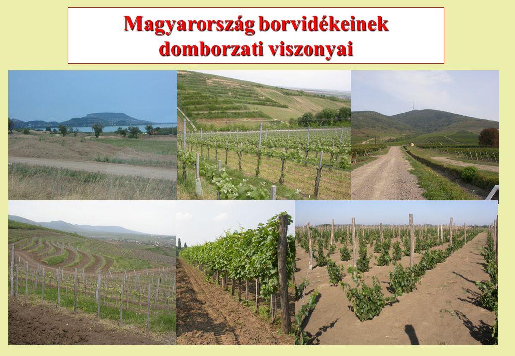 Magyarország borvidékeinek domborzati viszonyai