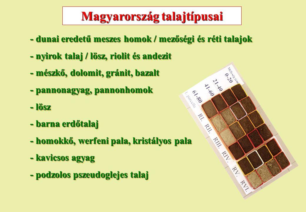 Magyarország talajtípusai