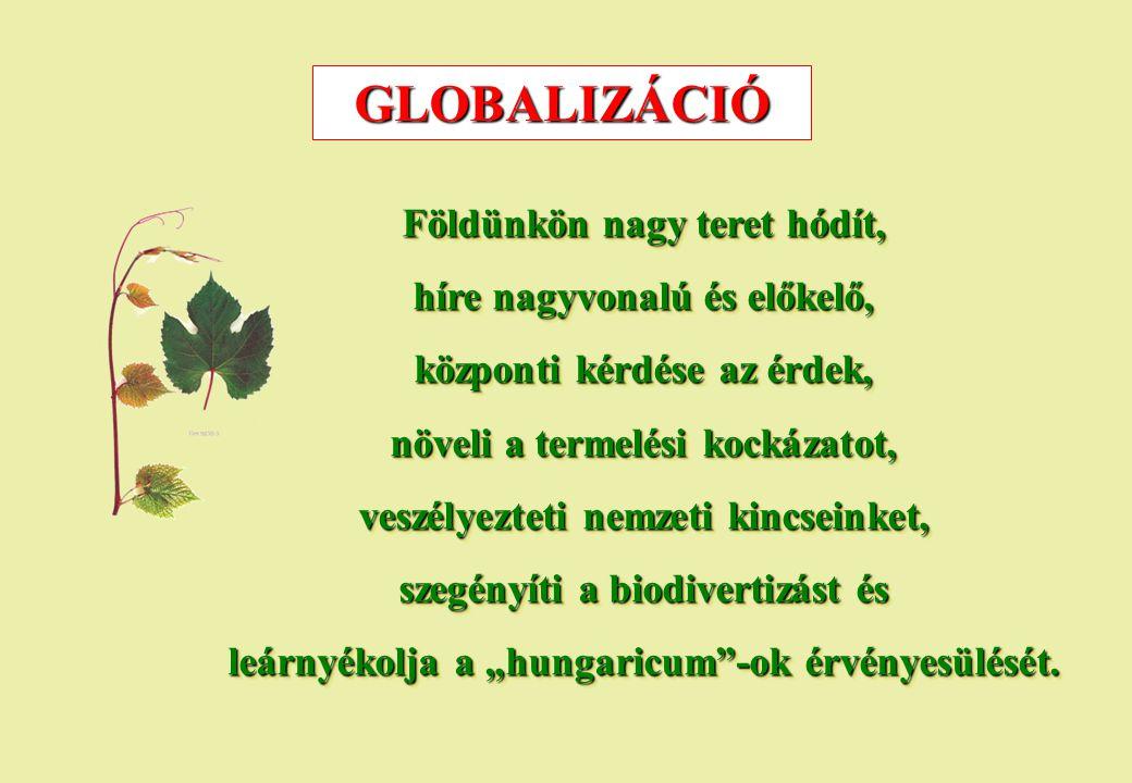 GLOBALIZÁCIÓ Földünkön nagy teret hódít, híre nagyvonalú és előkelő,