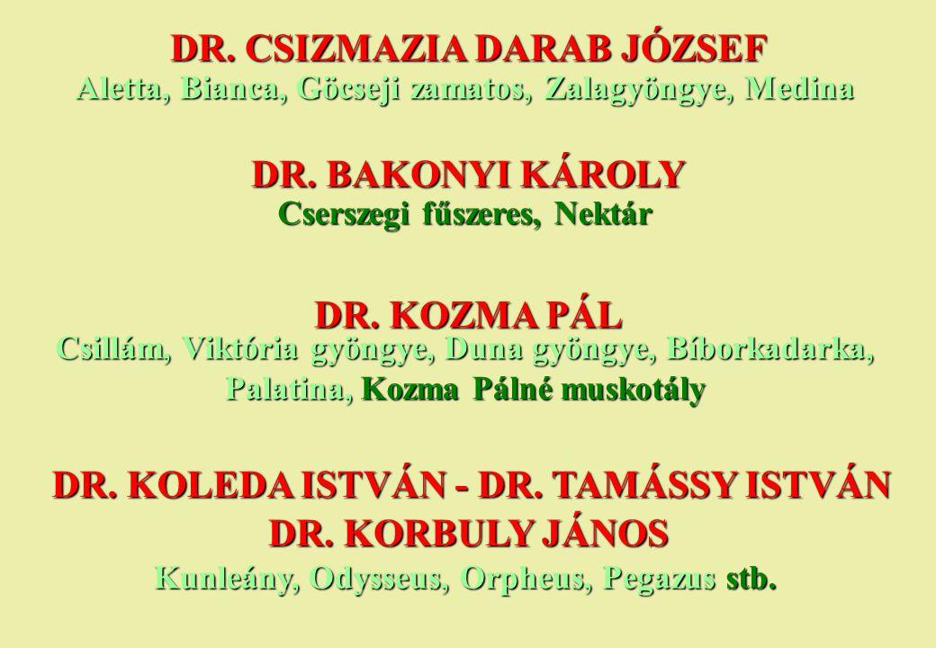 DR. CSIZMAZIA DARAB JÓZSEF