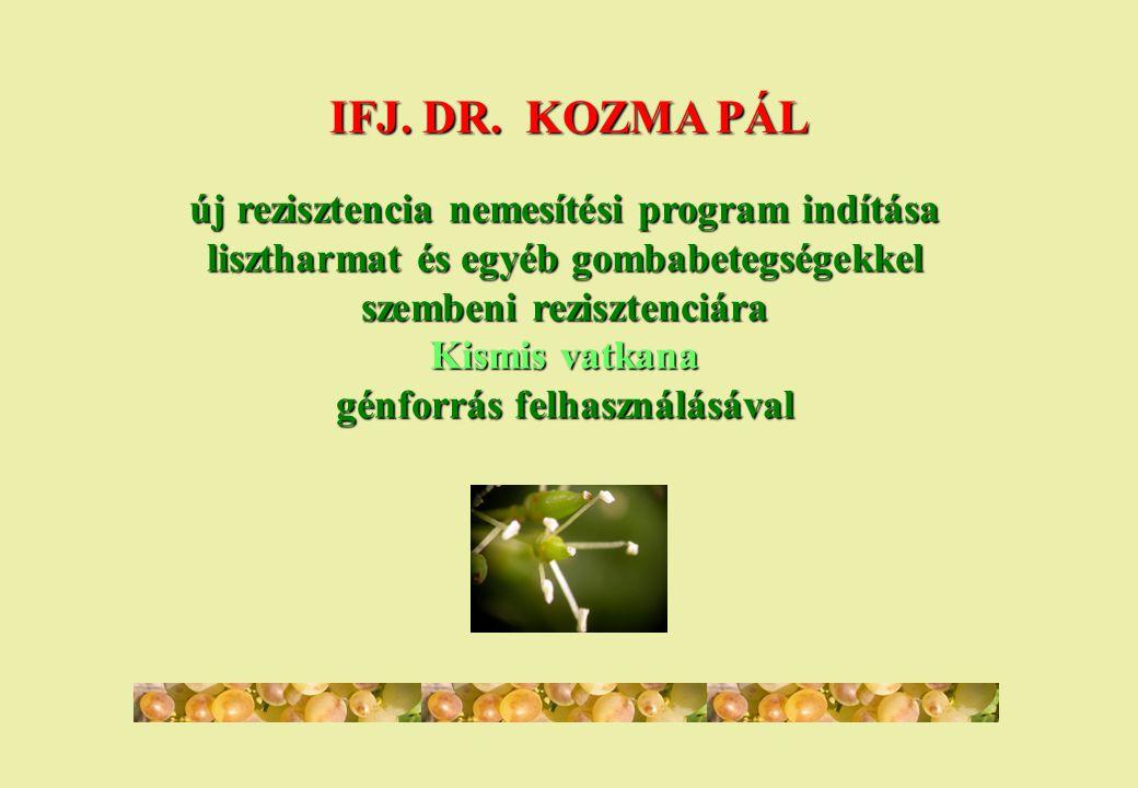 IFJ. DR. KOZMA PÁL