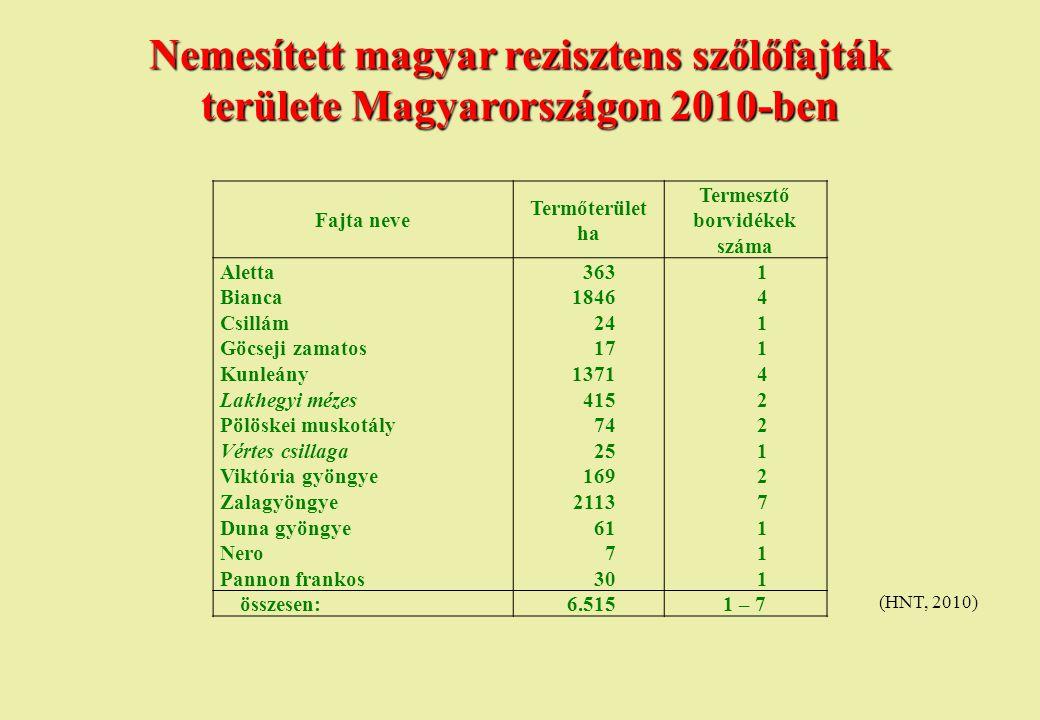 Termesztő borvidékek száma